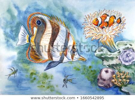 рыбы · тварь · баннер · иллюстрация · графических · сердиться - Сток-фото © robuart