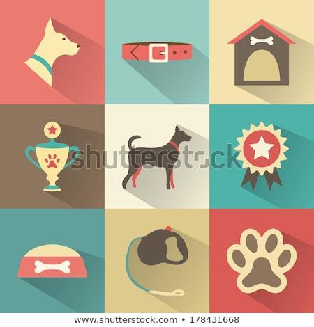 икона вектора веб мобильных применения можете Сток-фото © smoki