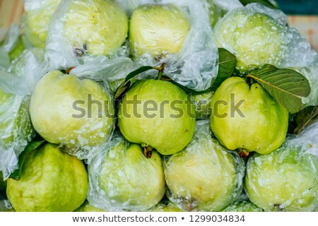 Organic guava grows in a plastic bag to protect against pests Stock photo © galitskaya