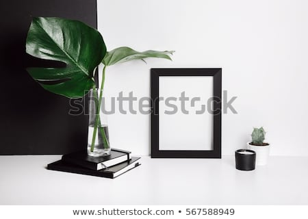 Monstera leaves life style Stock photo © neirfy