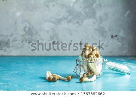 Buna Shimeji - edible mushroom from East Asia Stock photo © brebca