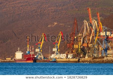 industrial · puerto · hamburgo · Alemania · noche · buques - foto stock © prill