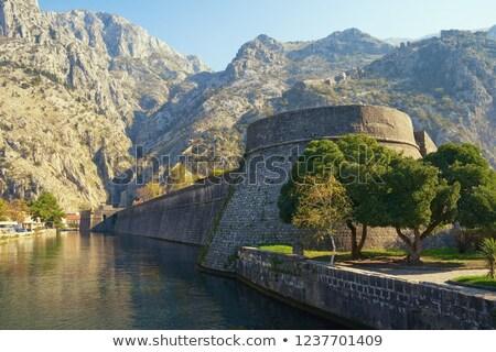 Toren oude binnenstad venetiaanse Montenegro gebouw muur Stockfoto © Givaga