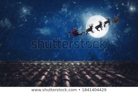 Rénszarvas holdfény illusztráció pár éjszaka sziluett Stock fotó © adrenalina