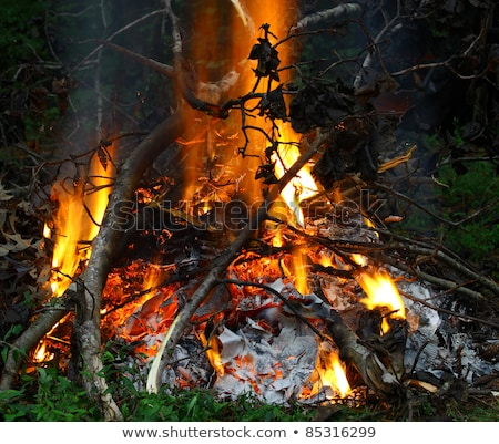 Parlak yanan ahşap dışında şenlik ateşi Alevler Stok fotoğraf © latent
