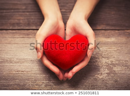 red heart on hands Stock photo © ssuaphoto