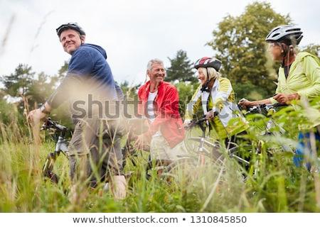 bicikli · dől · fából · készült · posta · fű - stock fotó © bobhackett