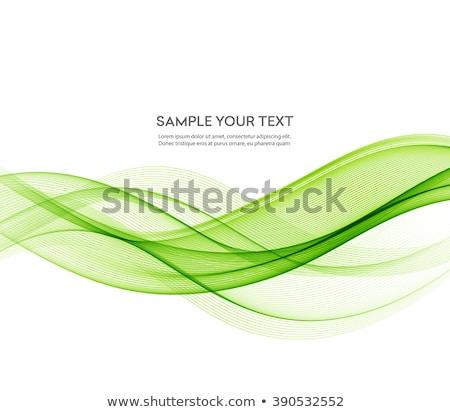 spring in green lines Stock photo © marinini