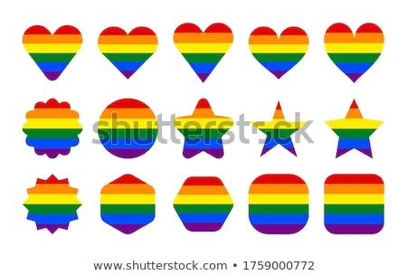 Homoszexuális zászló kör csíkos matrica vektor Stock fotó © gubh83