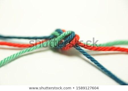 corda · conjunto · branco · isolado · segurança · cabo - foto stock © ongap