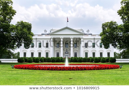 View on Washington with White House Stock photo © Hofmeester