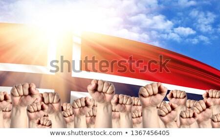 Norwegia · banderą · grunge · obraz · szczegółowy - zdjęcia stock © stevanovicigor