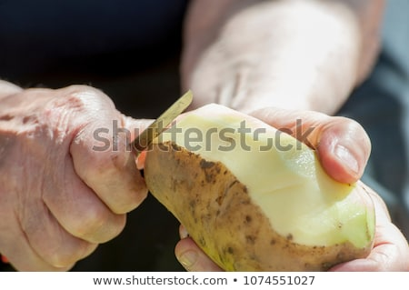 Potatoes organic vegetable with cuts Stock photo © LoopAll