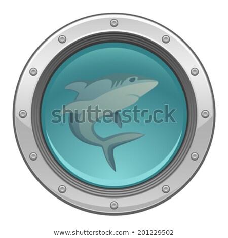 Shark on the porthole Stock photo © Koufax73