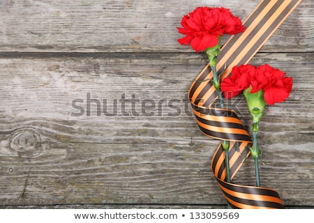 Carnation and bow of St. George Ribbon Stock photo © Valeriy