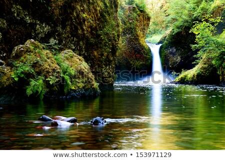 Stockfoto: Punch Bowl Falls At Eagle Creek