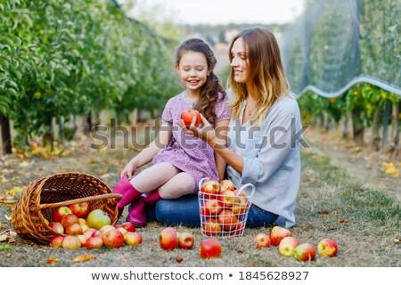Portrait of two beautiful women in the orchard Stock photo © konradbak
