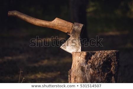 Vecchio ax legno sfondo bianco oggetto Foto d'archivio © Valeriy