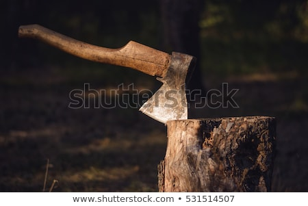 velho · isolado · branco · madeira · trabalhar · metal - foto stock © valeriy