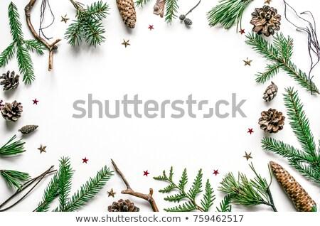 Ramki sosny przestrzeni tekst christmas nowy rok Zdjęcia stock © Valeriy