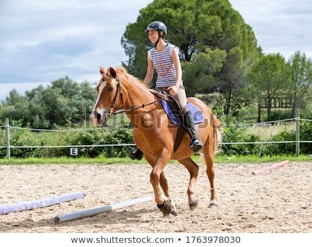girl riding horse stock photo © paha_l