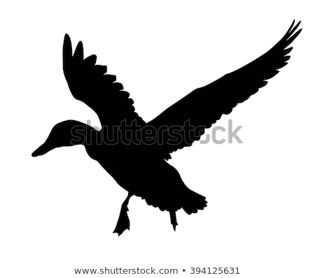 flying duck silhouette with target icon stock photo © angelp
