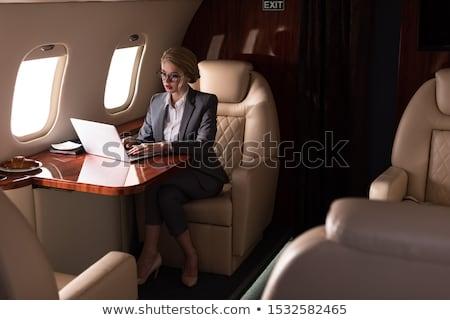 Aviación estilizado aire transporte cielo vacaciones Foto stock © tracer