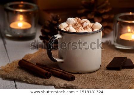 Quente cacau beber comida café inverno Foto stock © racoolstudio