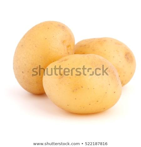 three new potatoes Stock photo © Digifoodstock