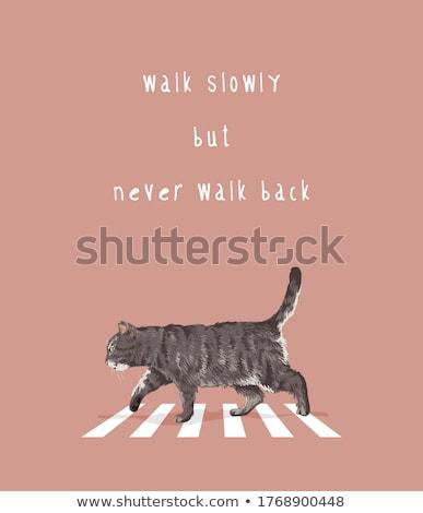 Kot przejście dla pieszych ilustracja drogowego podpisania pomoc Zdjęcia stock © adrenalina