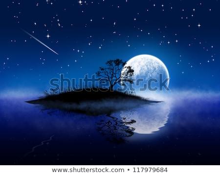 Tájkép fák folyó éjszaka fa tavasz Stock fotó © ddraw
