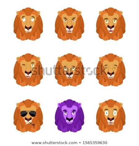 лев набор Аватара печально сердиться лице Сток-фото © popaukropa