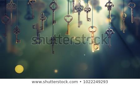 Kulcs fiatal gyönyörű nő izolált fehér nő Stock fotó © hsfelix