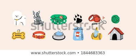 Collar for Dogs and Cats, Vector Illustration Stock photo © robuart