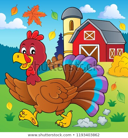 Stockfoto: Lopen · Turkije · vogel · afbeelding · blad · boerderij