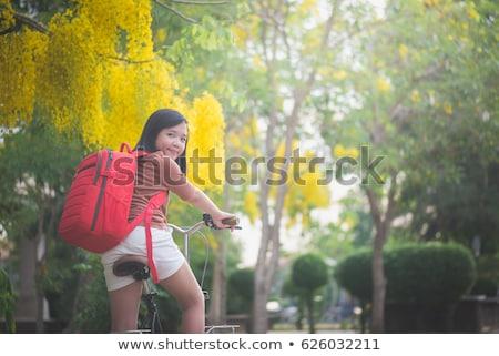 Thai lány lovaglás bicikli park illusztráció Stock fotó © bluering