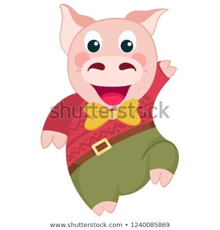 Cartoon свинья синий Hat Дед Мороз Сток-фото © liolle