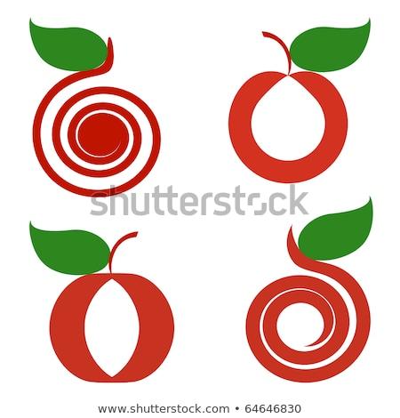 стилизованный зеленый яблоко лист логотип вектора Сток-фото © blaskorizov