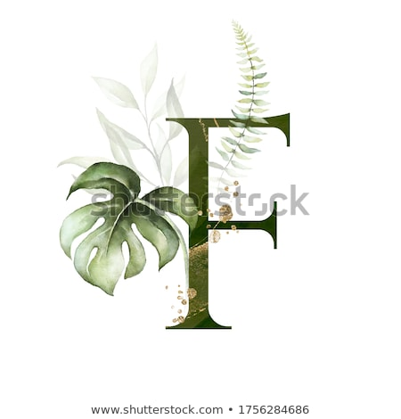 Alphabet letter F Stock photo © colematt