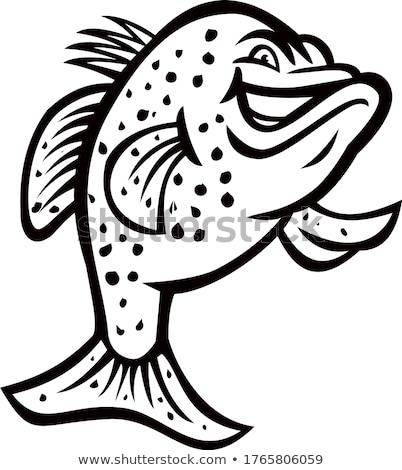 Stock photo: Crappie Fish Standing Mascot
