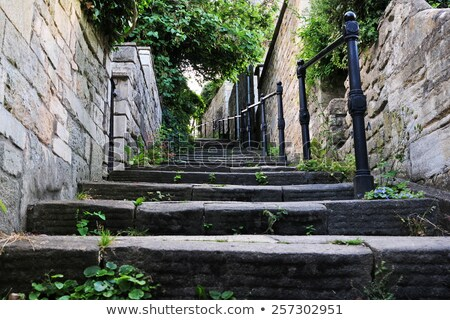 Brick staircase with stairs Stock photo © vapi