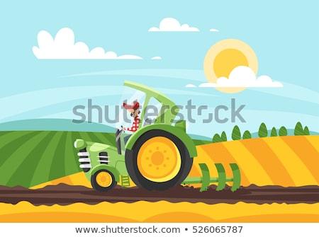 çiftçi traktör alan ayarlamak tarım makinalar Stok fotoğraf © robuart