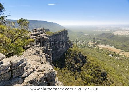 Brecha vista forestales naturaleza fondo azul Foto stock © THP