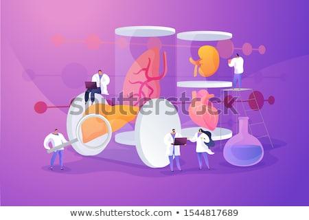 Organi scienziati crescita grande cuore provetta Foto d'archivio © RAStudio