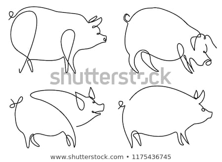 Stok fotoğraf: Animal Outline For Pig