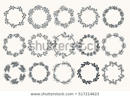 Stock fotó: Fényképkeret · virágok · nagy · szett · gradiens · háló