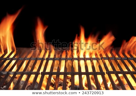 barbecue fire grill close up stock photo © neirfy