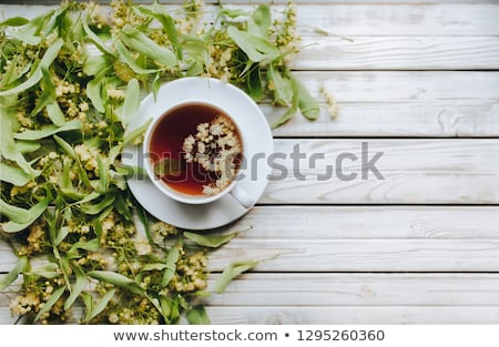 Healthy hot linden tea in cup stock photo © furmanphoto
