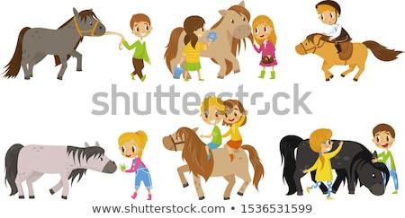 little boy feeding a horse stock photo © photography33