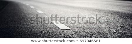 white line on the asphalt Stock photo © inxti